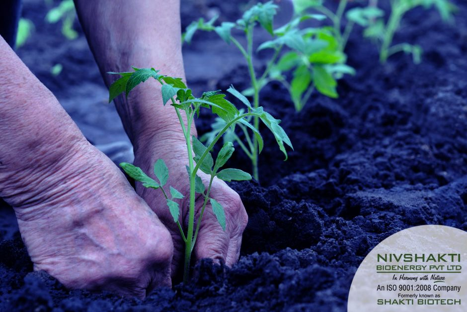 organic pesticides manufacturers
