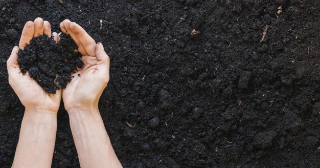What is a fertilizer?